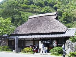 0505shizuoka_004_2