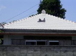 20065_043