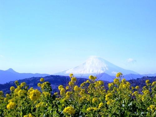 Ninomiya_058_2