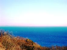 Ninomiya_078