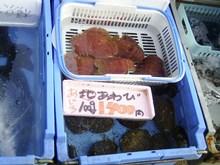 Ajiro_018