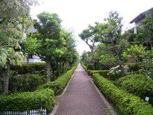 Akaimichi