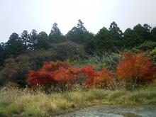 Atami_052