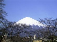 Fujinomiya_015