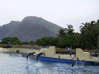 hawaii1