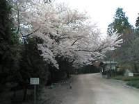 Himeji1_1