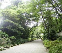 Hokuriku_051