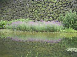 Hokuriku_068