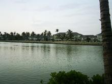 Honolulu1_076