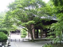 Kamakura_020