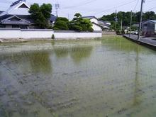 Kurashiki_001