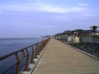 Niigata_002