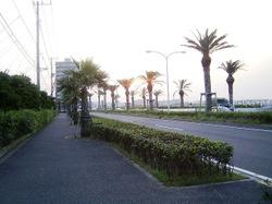 Urayuuhi_002